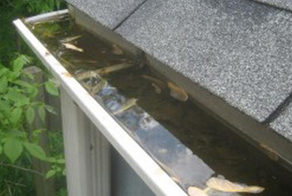 Rain-Gutter-Cleaning-Seattle-WA